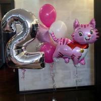 Композиция из шариков на двухлетие с розовой кошечкой