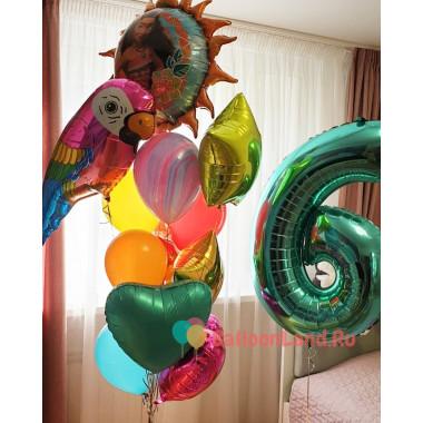 Композиция из гелиевых шаров на День Рождения с Моаной. попугаем Ара и цифрой