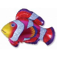 Фигурный шар Рыбка (пестрая)