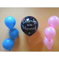 Набор шариков Мальчик или Девочка для будущих родителей
