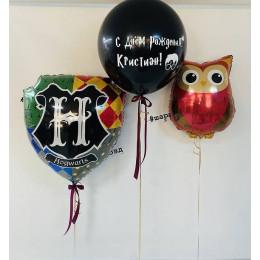 Набор с совой и гербом Хогвартса на День рождения