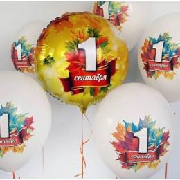 Шар-круг 1 сентября с кленовыми листочками - дополнительное фото #2