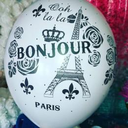 Воздушные шары День в Париже - дополнительное фото #4