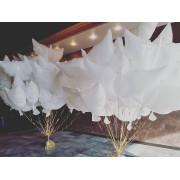 Шары голуби с гелием (биоголуби) - дополнительное фото #3