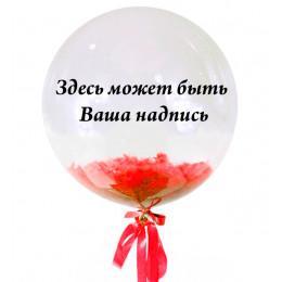 Шар-пузырь Надпись с перьями