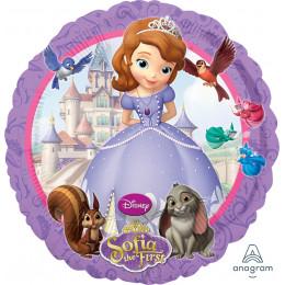 Шар-круг Принцесса София