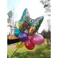 Букет шариков разноцветных с Бабочкой