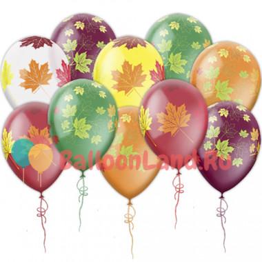Воздушные шары 'Осенние листья'