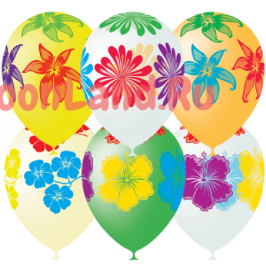 Воздушные шары 'Цветущий сад'